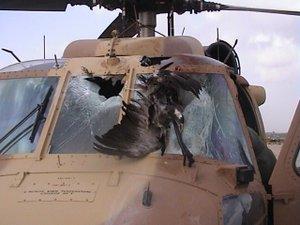 IAF-UH-60-after-birds-strike-outside