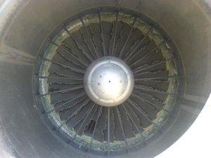 JT8D-Engine-after-Bird-Strike